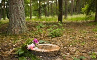 Kan ik in de natuur worden begraven?